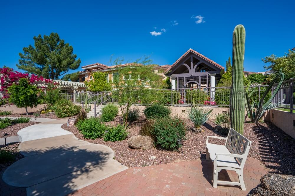 wide of the gazeebo and residences with cactus