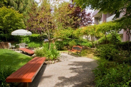 garden with 2 long, flat benches