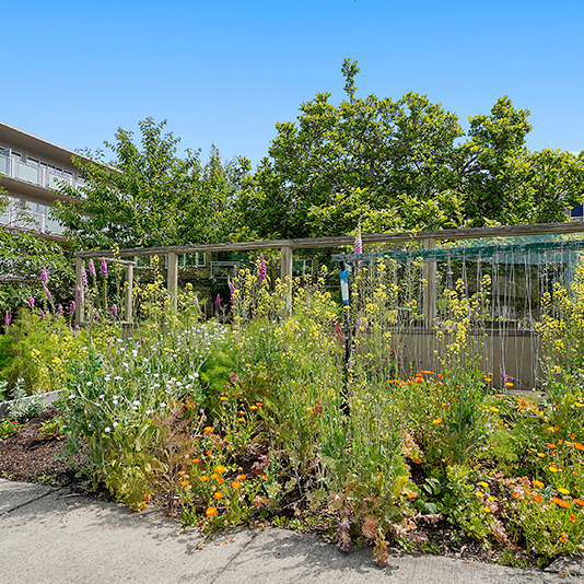 Exterior-Gardens-SCT0203
