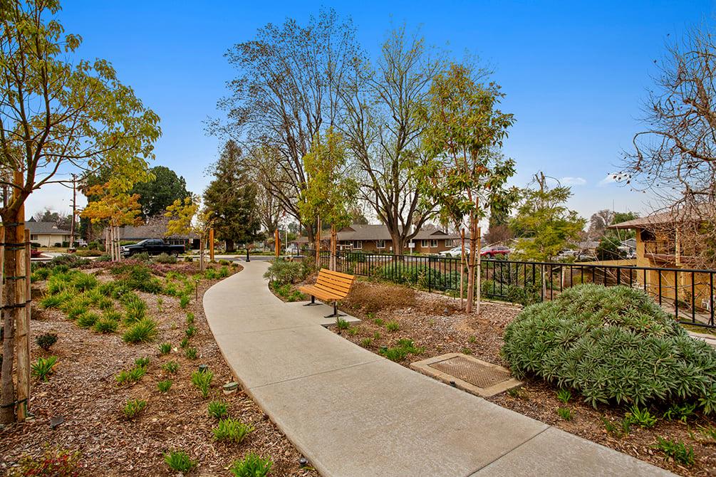 walking path with low maintenance landscape